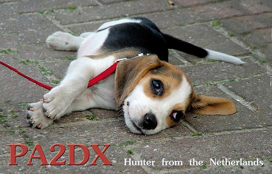 Название: pa2dx.jpg Просмотров: 851  Размер: 92.9 Кб
