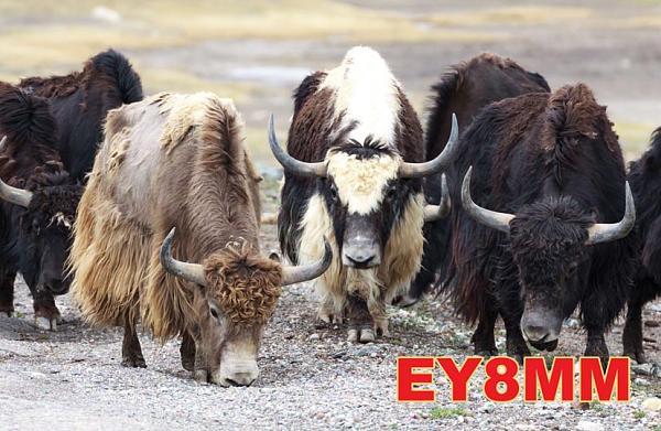 Нажмите на изображение для увеличения.  Название:EY8MM_2013_2.jpg Просмотров:107 Размер:120.7 Кб ID:105314