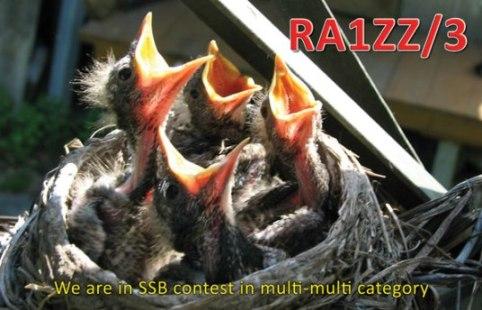 Название: ra1zz_3_f_small.jpg Просмотров: 1911  Размер: 43.8 Кб
