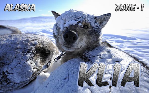 Нажмите на изображение для увеличения.  Название:KL1A_2013_QSL.png Просмотров:91 Размер:1.26 Мб ID:108319