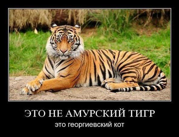 Название: 123.jpg Просмотров: 345  Размер: 72.8 Кб