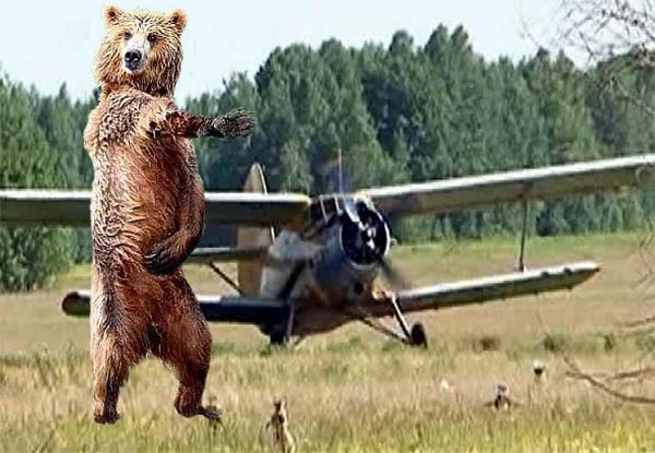 Нажмите на изображение для увеличения.  Название:медвед1.jpg Просмотров:133 Размер:155.0 Кб ID:125663