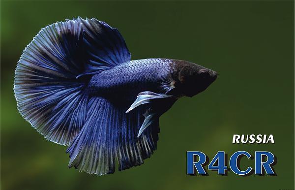 Нажмите на изображение для увеличения.  Название:R4CR_2.jpg Просмотров:88 Размер:280.4 Кб ID:134309