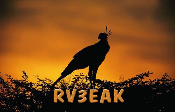 Название: rv3eak  qsl.jpg Просмотров: 1400  Размер: 29.1 Кб