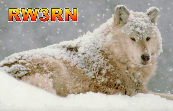 Название: Волк.jpg Просмотров: 1216  Размер: 72.3 Кб