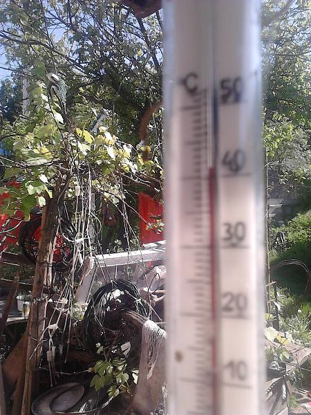 Нажмите на изображение для увеличения.  Название:температура  P220515_16.24..jpg Просмотров:51 Размер:541.9 Кб ID:140325