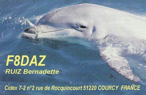 Название: F8daz-qsl.jpg Просмотров: 260  Размер: 128.1 Кб