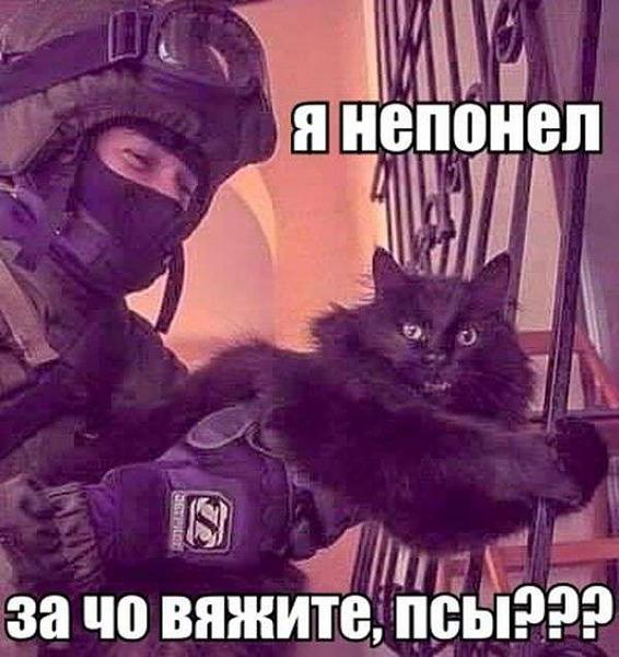 Нажмите на изображение для увеличения.  Название:1463678723_podborka_dnevnaya_05.jpg Просмотров:11 Размер:44.9 Кб ID:170625