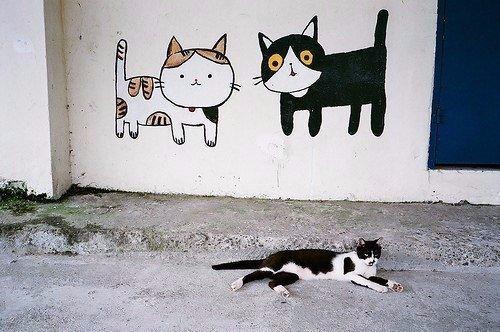 Название: кот.JPG Просмотров: 1570  Размер: 80.0 Кб