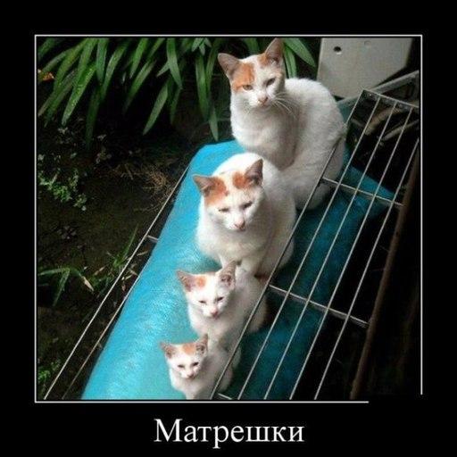 Название: matreshki.jpg Просмотров: 1455  Размер: 49.5 Кб