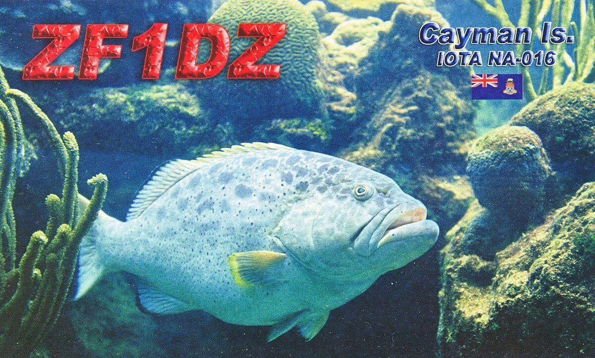 Нажмите на изображение для увеличения.  Название:ZF1DZ-f.jpg Просмотров:6 Размер:294.7 Кб ID:190490