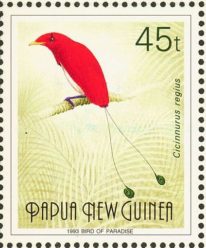 Название: papua-bird.jpg Просмотров: 702  Размер: 46.9 Кб