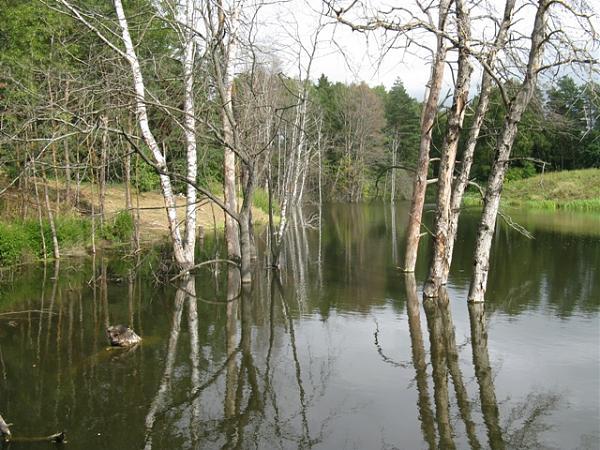 Нажмите на изображение для увеличения.  Название:2017  озеро.JPG Просмотров:8 Размер:217.5 Кб ID:195792