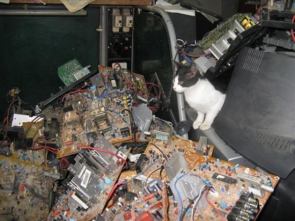 Нажмите на изображение для увеличения.  Название:Radio  кот.JPG Просмотров:56 Размер:191.6 Кб ID:198941