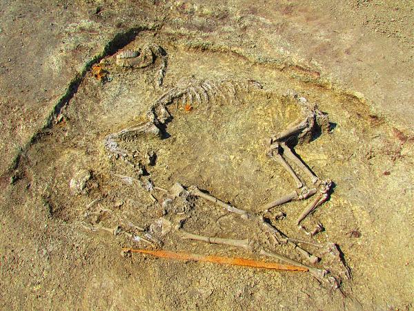Нажмите на изображение для увеличения.  Название:кости.jpg Просмотров:41 Размер:559.8 Кб ID:199133