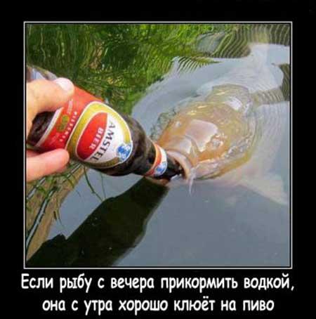 Название: proxy.imgsmail.ru.jpeg Просмотров: 1727  Размер: 23.5 Кб