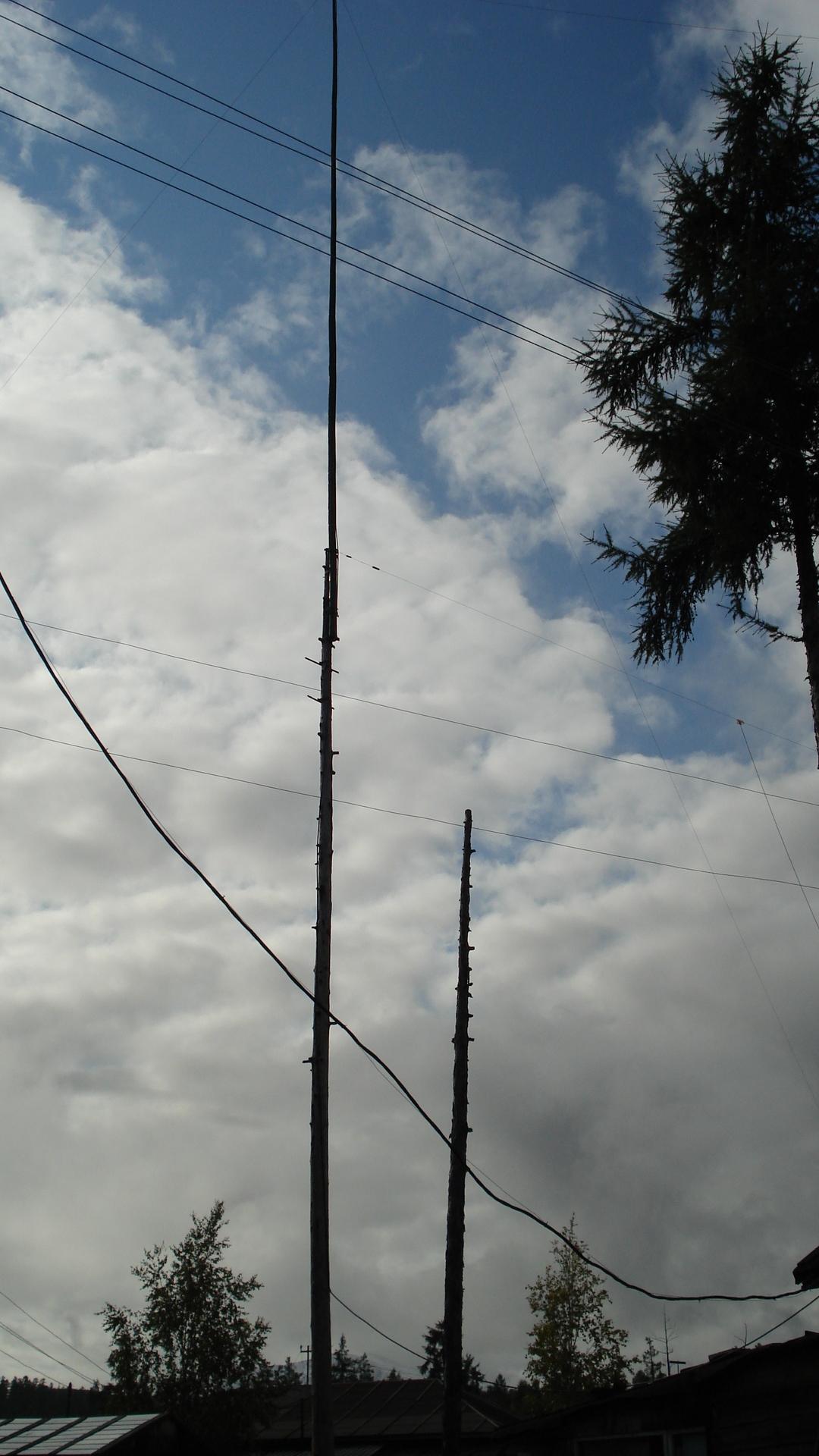 members/21760-rt1s-album429-picture204942-antena-160-80m.jpg