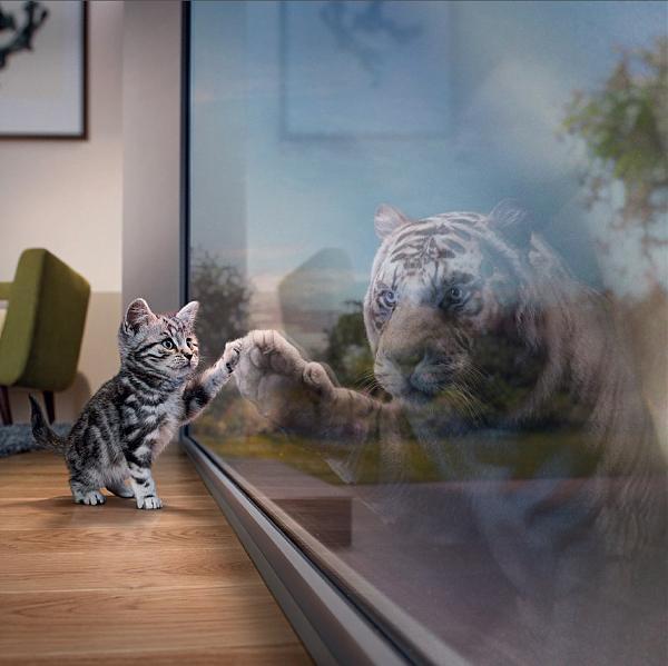 Нажмите на изображение для увеличения.  Название:CAT.jpg Просмотров:16 Размер:118.9 Кб ID:208587