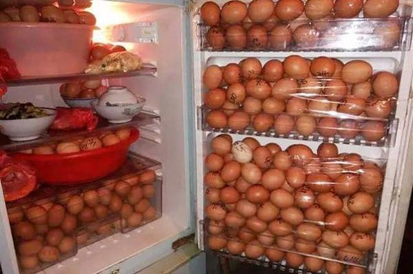 Нажмите на изображение для увеличения.  Название:яичная диета (за&#.jpg Просмотров:28 Размер:58.3 Кб ID:208589