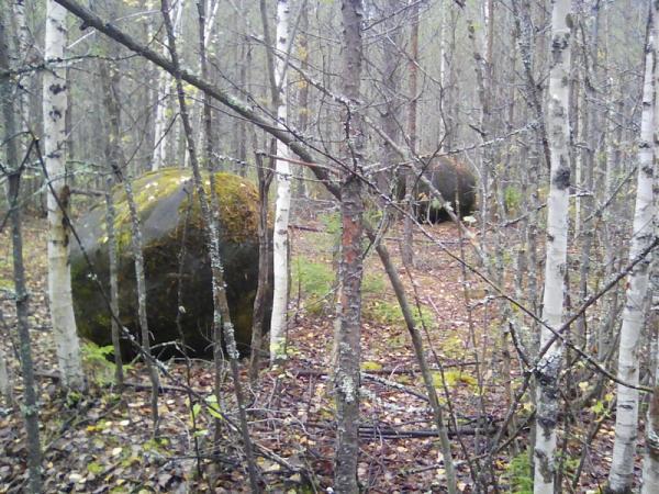 Нажмите на изображение для увеличения.  Название:камни в лесу.jpg Просмотров:6 Размер:272.5 Кб ID:219367