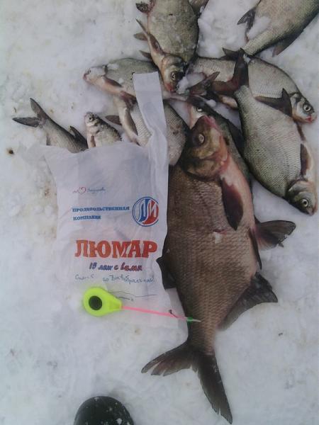Нажмите на изображение для увеличения.  Название:пакет для рыбы.jpg Просмотров:11 Размер:107.7 Кб ID:224806