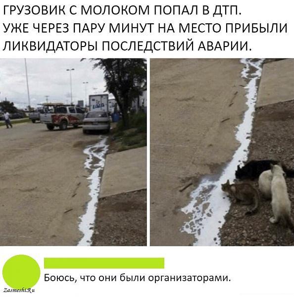 Нажмите на изображение для увеличения.  Название:2326-chyotko-splanirovannaya-operaciya.jpg Просмотров:77 Размер:145.2 Кб ID:239120