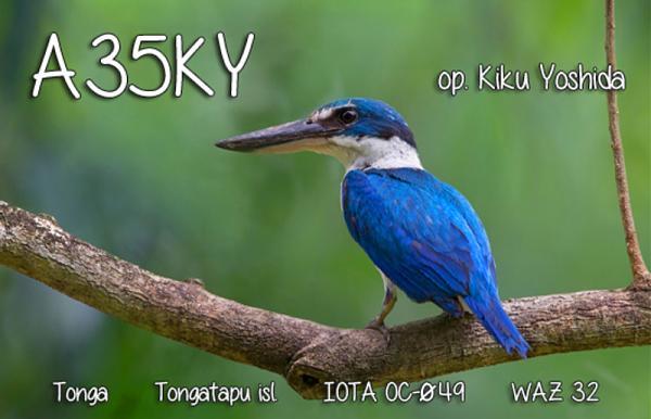 Нажмите на изображение для увеличения.  Название:A35KY.jpg Просмотров:0 Размер:264.1 Кб ID:253384