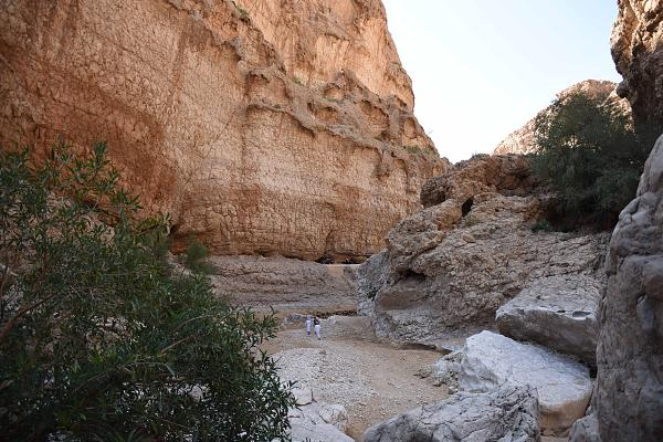Нажмите на изображение для увеличения.  Название:1.Oman.jpg Просмотров:1 Размер:1.37 Мб ID:253640