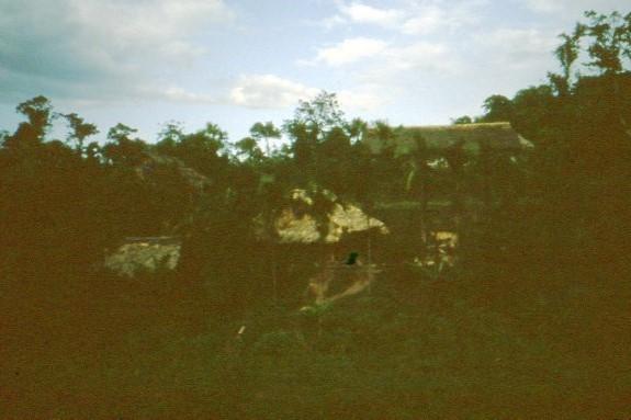 Название: Vietnam 1991.jpg Просмотров: 790  Размер: 74.6 Кб