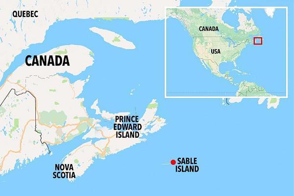 Нажмите на изображение для увеличения.  Название:sable-island-map.jpg Просмотров:3 Размер:36.0 Кб ID:267964