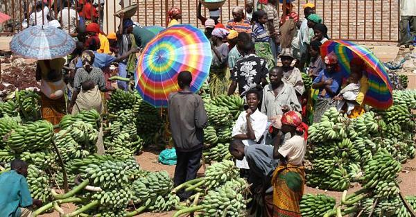 Нажмите на изображение для увеличения.  Название:9u-Burundi__Country_portal_shutterstock_1239180571-137.jpg Просмотров:4 Размер:99.6 Кб ID:268261