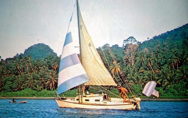Нажмите на изображение для увеличения.  Название:Dove-in-the-Solomon-Islands-Small-1.jpg Просмотров:5 Размер:99.0 Кб ID:270833