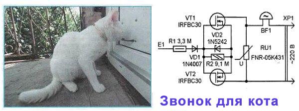 Название: звонок для кота.jpg Просмотров: 1386  Размер: 86.3 Кб