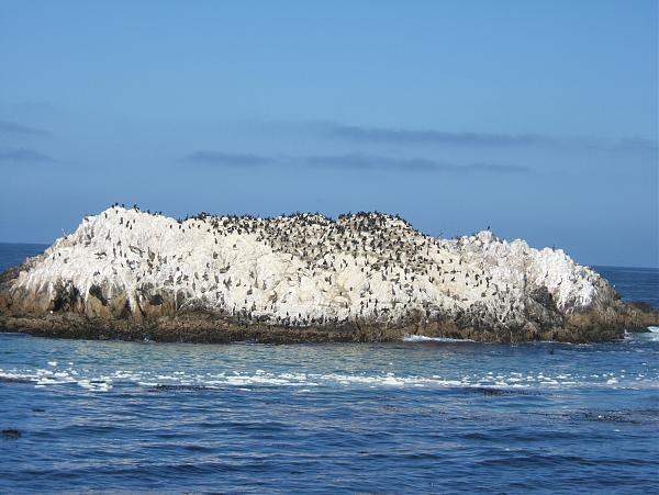 Нажмите на изображение для увеличения.  Название:NA-187 White Rock island.jpg Просмотров:5 Размер:1.10 Мб ID:286547