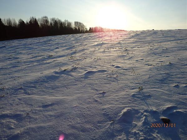 Нажмите на изображение для увеличения.  Название:Еще нет лыжни.JPG Просмотров:2 Размер:372.5 Кб ID:293155
