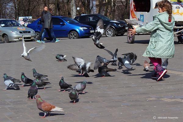 Нажмите на изображение для увеличения.  Название:Girl and doves.jpg Просмотров:3 Размер:162.4 Кб ID:294926
