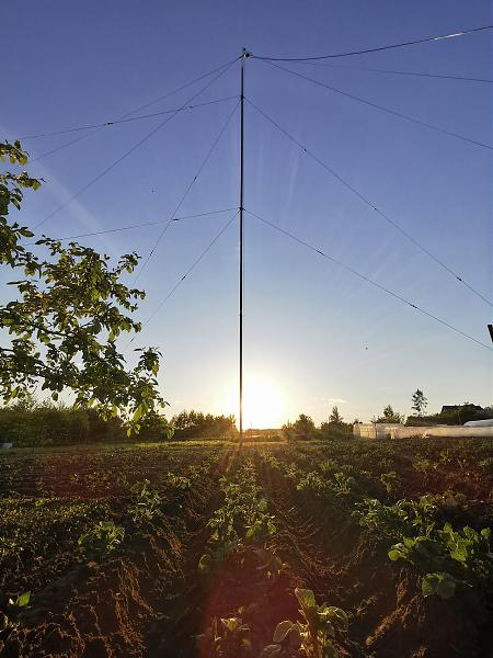 Нажмите на изображение для увеличения.  Название:R2DTE potato field..jpg Просмотров:19 Размер:1.17 Мб ID:306701