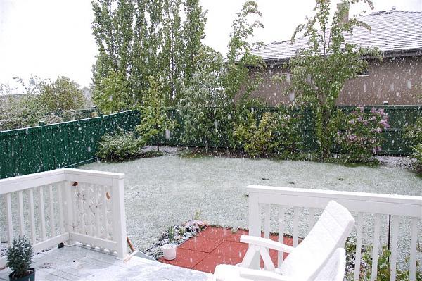 Нажмите на изображение для увеличения.  Название:May 29 Snow 008.jpg Просмотров:140 Размер:195.9 Кб ID:34092