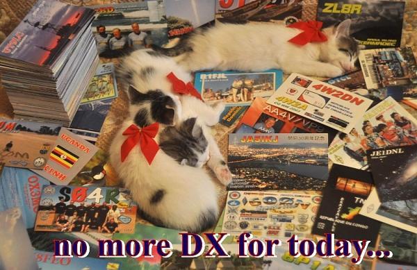Нажмите на изображение для увеличения.  Название:no more dx.jpg Просмотров:163 Размер:419.2 Кб ID:55553