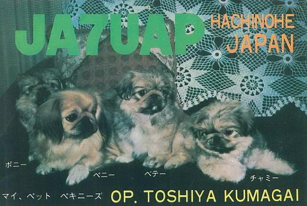 Нажмите на изображение для увеличения.  Название:JA7UAP.JPG Просмотров:94 Размер:118.1 Кб ID:70742