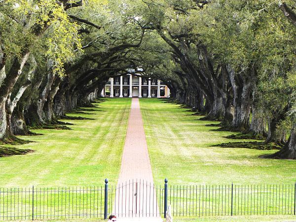 Нажмите на изображение для увеличения.  Название:plantation.JPG Просмотров:106 Размер:810.1 Кб ID:81748