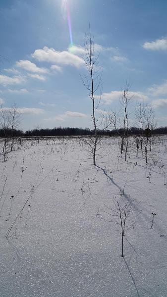 Нажмите на изображение для увеличения.  Название:Таяние снега.JPG Просмотров:84 Размер:246.5 Кб ID:89427