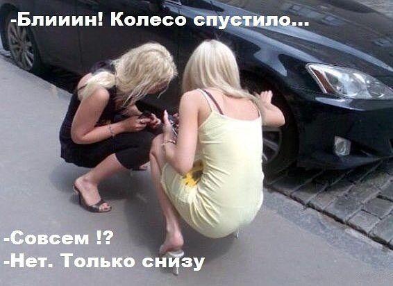137387d1427820009-yumor-v-fotografiyah-i